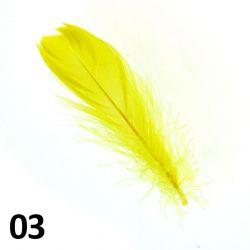 Peříčka na nehty č.03 - 5 ks